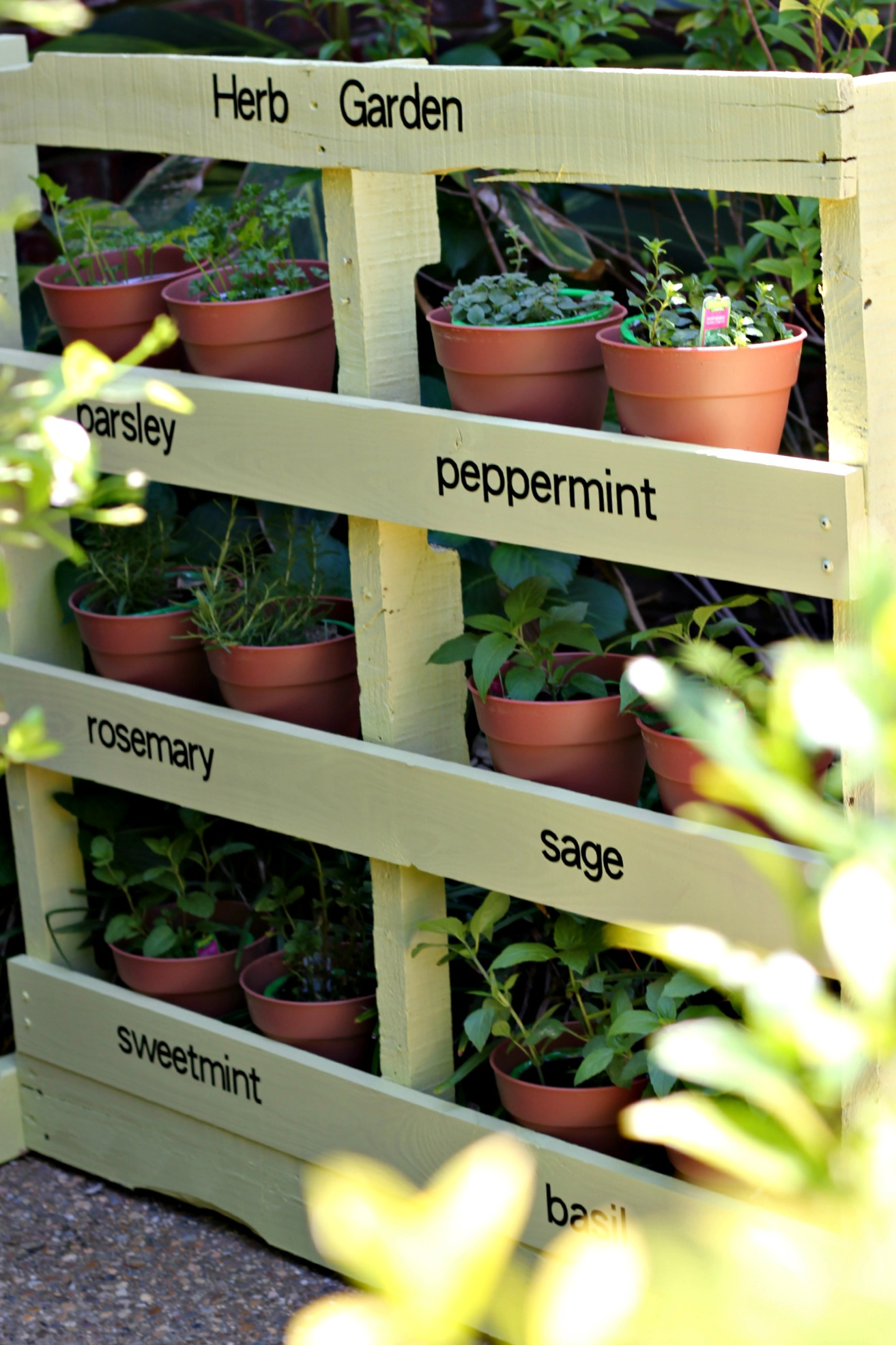 Paalet Herb Garden On Pinterest